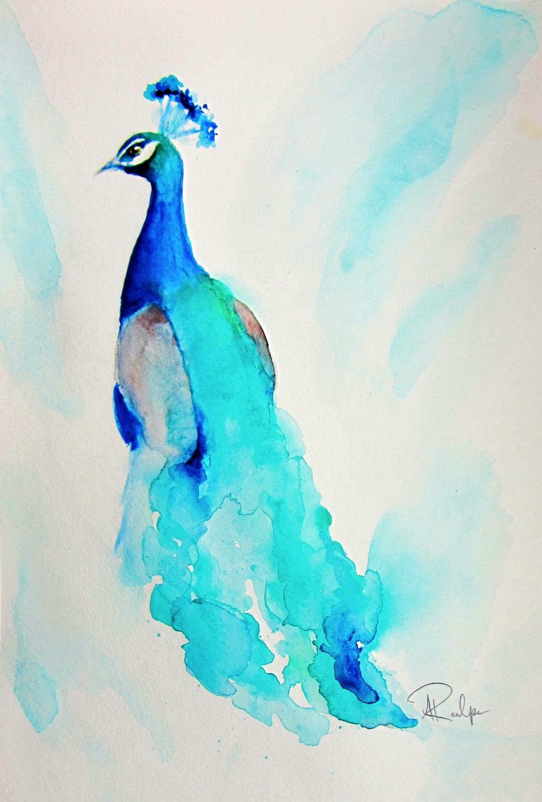 Peacock Watercolor painting