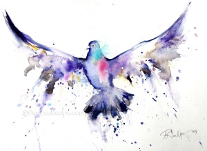 Fly bird fly andrearealpe